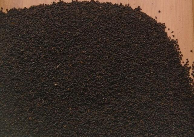 红碎茶初制工艺