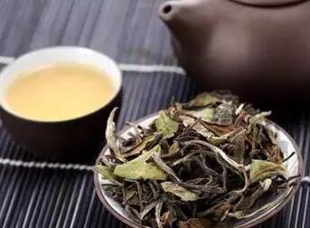 白茶中的贡眉有何特点